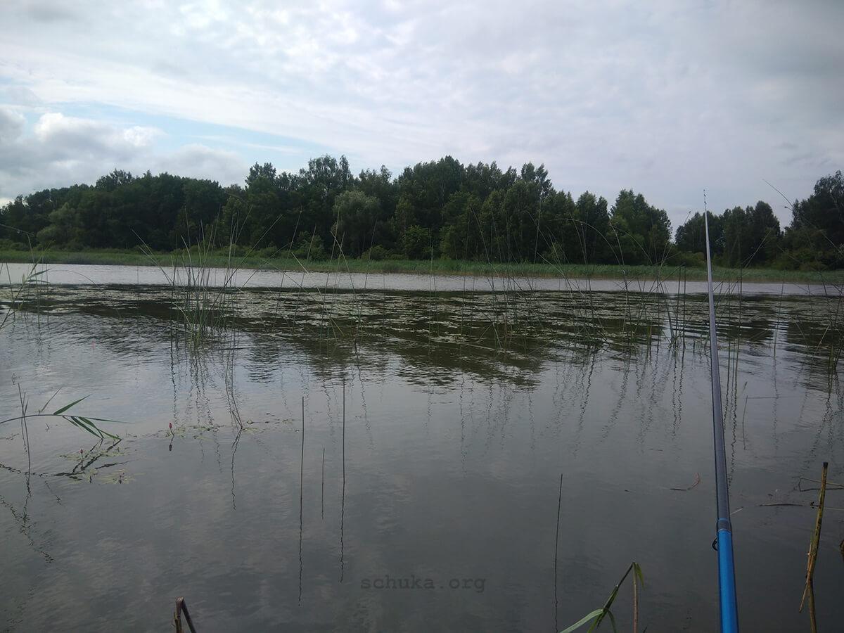 Ловля на поплавок